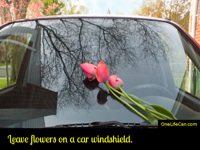 Mindful Act of Kindness - Leave Flowers on a Car Windshield